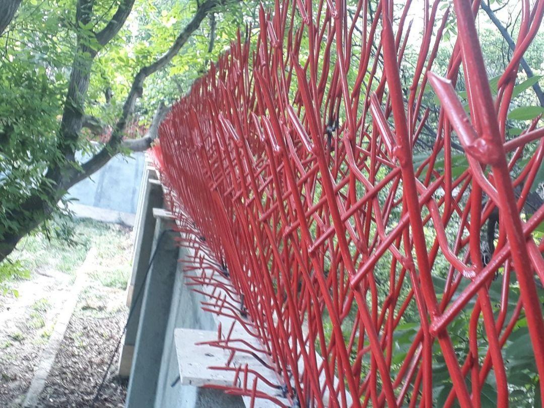 حفاظ شاخ گوزنی، حفاظ روی دیوار ، حفاظ ساختمان ، حفاظ لاکچری ، حفاظ دیوار ، حفاظ آهنی ، نرده حفاظ آهنی